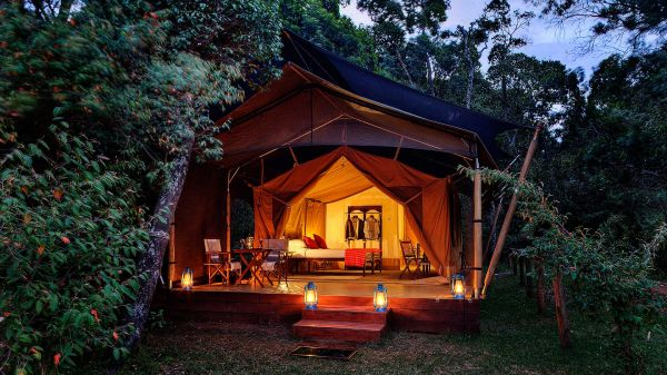 elephant-pepper-camp-luxury-tent-4D75D9562-CF0F-44DE-E2F8-92A7D107CF69.jpg