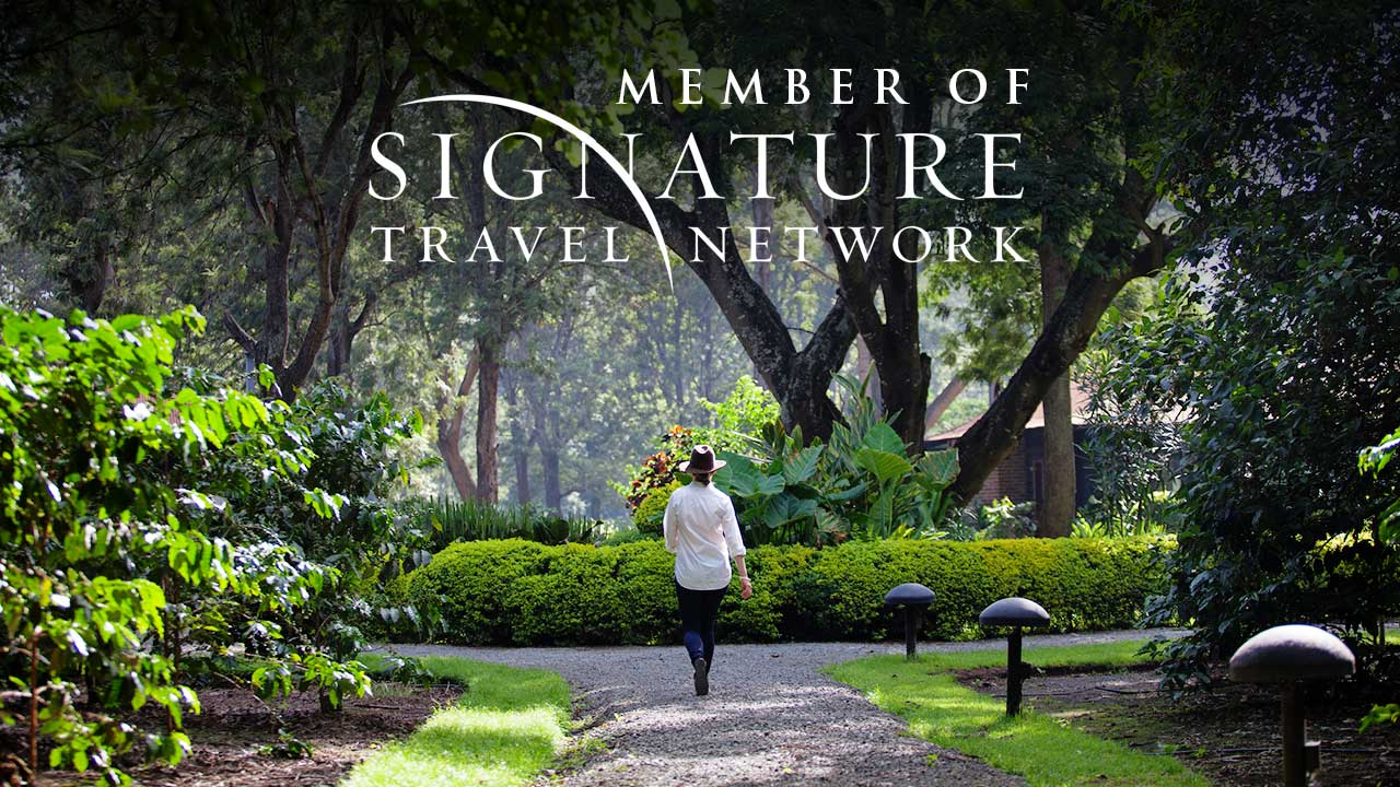 signature-travel-network