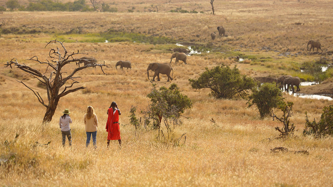Elewana-Kifaru-bush-walk